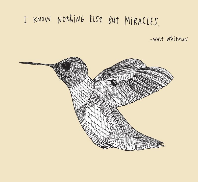 61-WALT-WHITMAN-MIRACLES